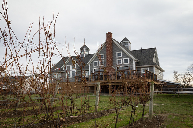 M Cellars: A Weekend Hobby Turned Award Winning BoutiqueWinery