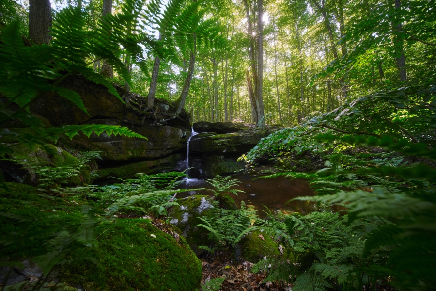 You Won't Believe This Amazing Gem Sits Hidden in Ohio
